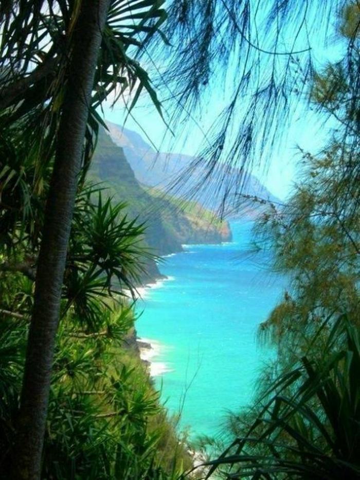 Hawaii-Inseln-Kauai-Urlaub-exotisch-Palmen