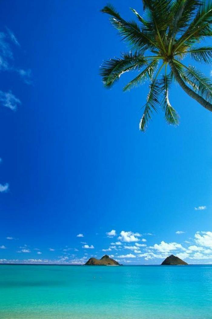 Hawaii-Inseln-LaniKai-einzigartig-exotisch