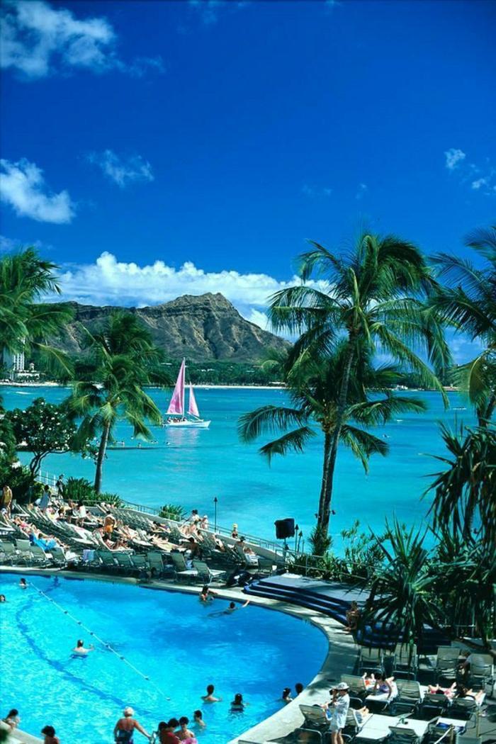 Hawaii-Inseln-Oahu-exotisch-Palmen-Urlaub