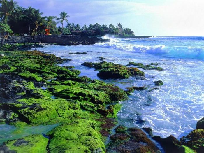 Hawaii-Küste-Strand-Ozean-Urlaub-exotisch