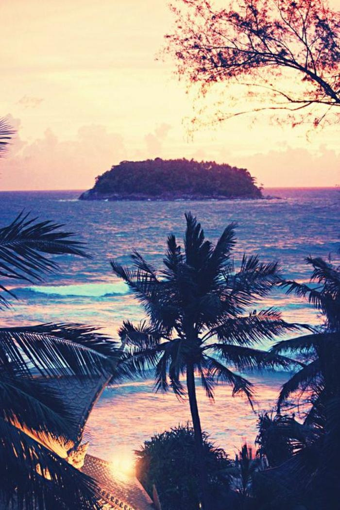 Hawaii-herrliche-Sicht-Palmen-Sonnenuntergang