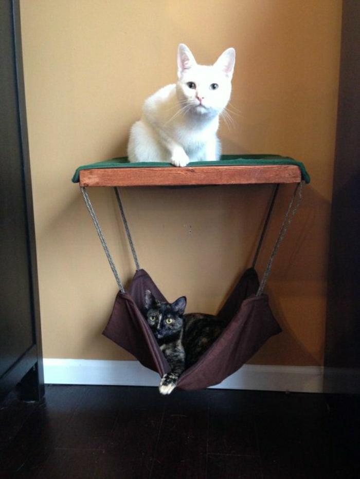 Die hängematte für katzen ist ein absoluter hit