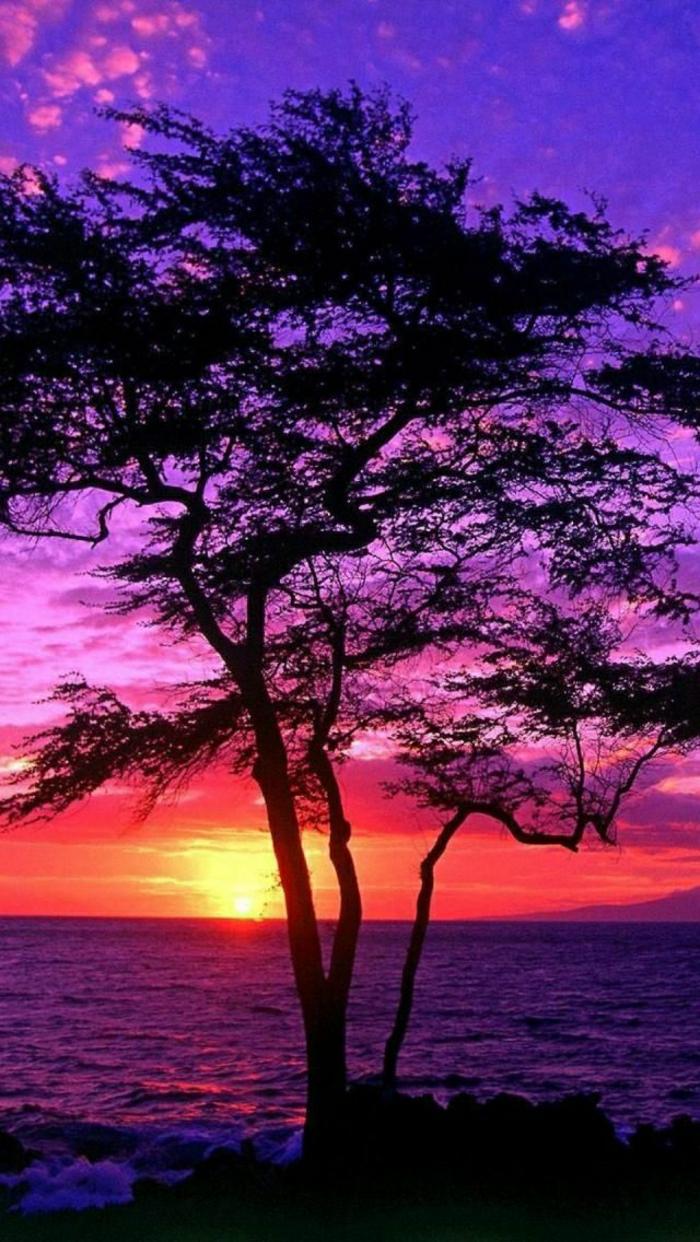 Sonnenuntergang-Maui-Insel-Hawaii