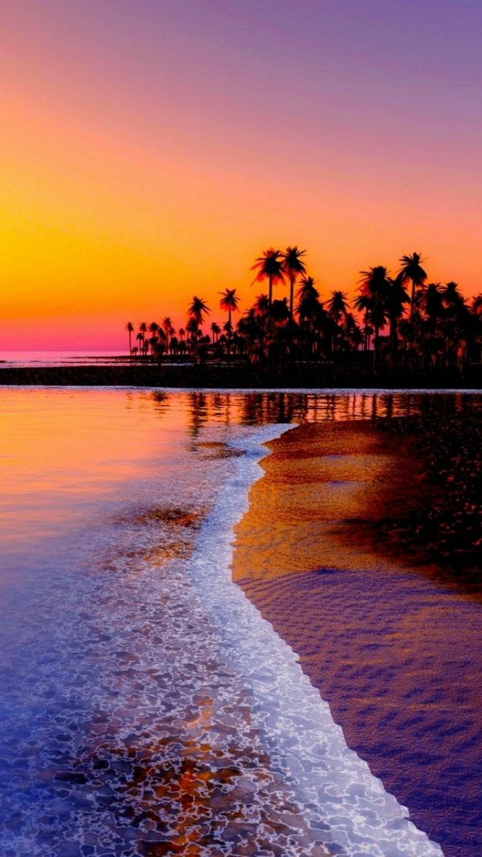Sonnenuntergang-in-Hawaii-Palmen-exotisch-faszinierend