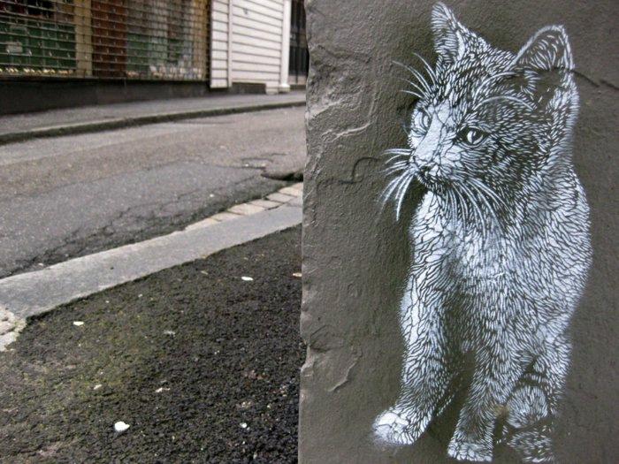Street-Artist-Katze-schwarz-weiß-Graffiti