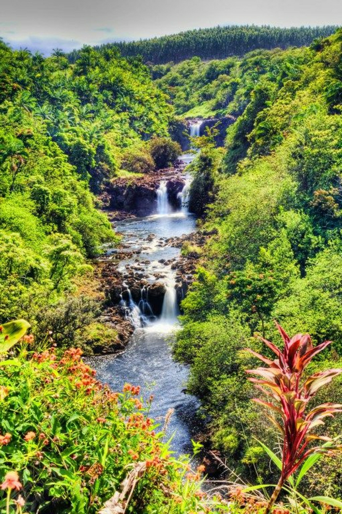 Umauma-Wasserfall-Big-Island-Hawaii