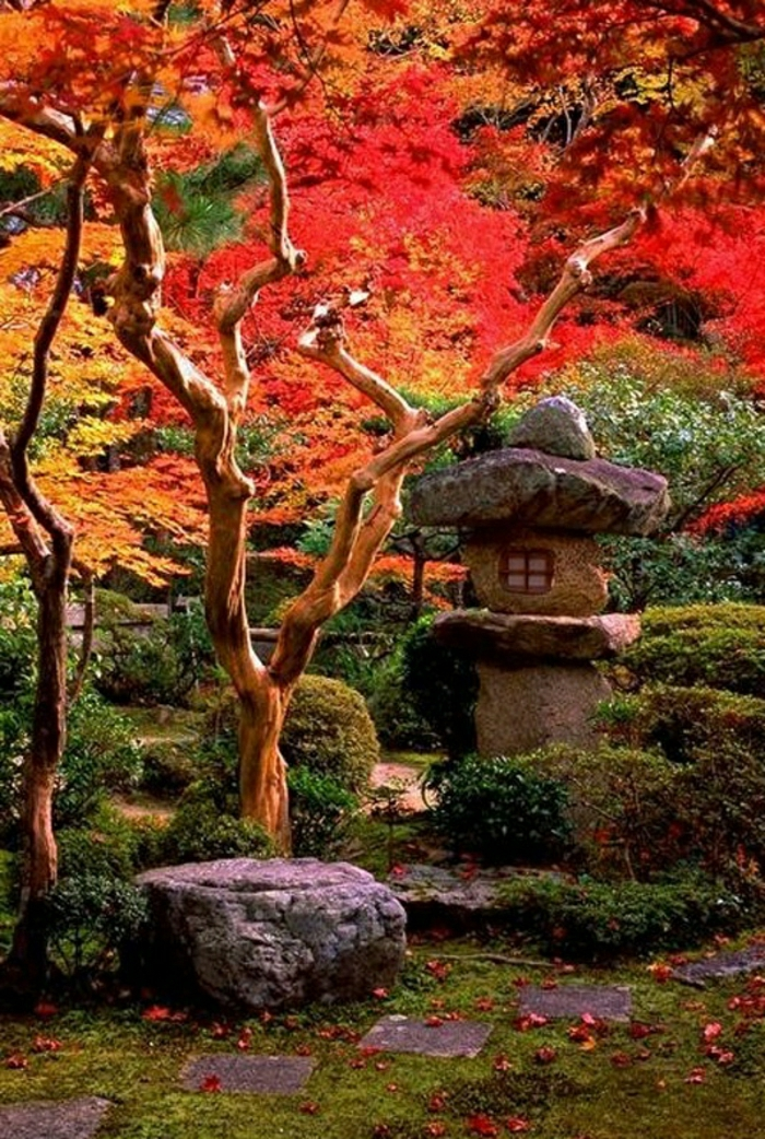 Zen-Garten-japanisch-asiatisch-Bonsaibäume-Steine