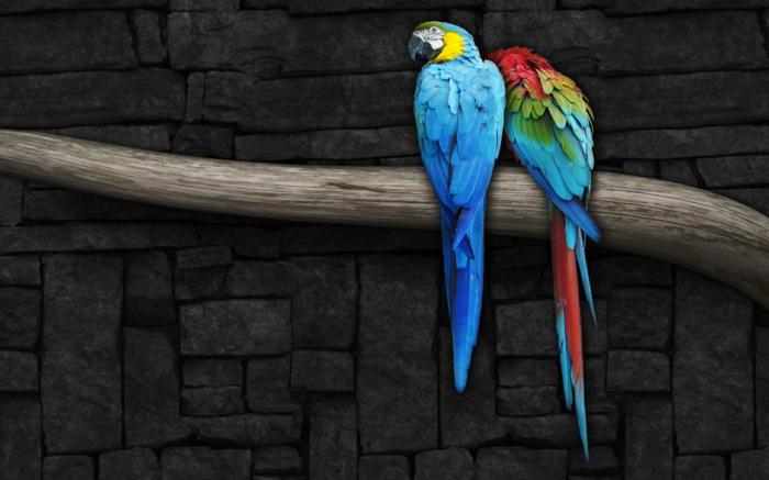 abstrakte-kunst-zwei-bunte-papageien-auf-einem-baumzweig