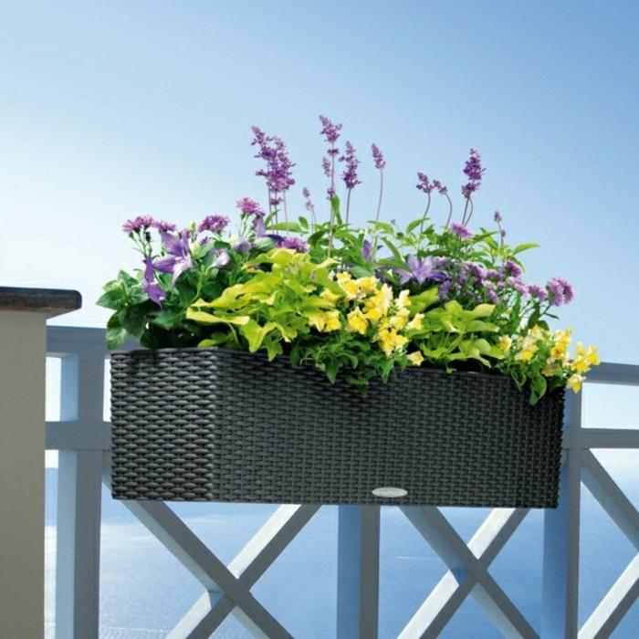 balkon blumen f r eine sch ne au engestaltung. Black Bedroom Furniture Sets. Home Design Ideas
