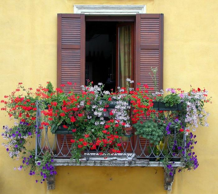 balkon-blumen-gelbe-wand