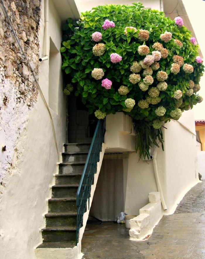balkon-blumen-schöne-treppen
