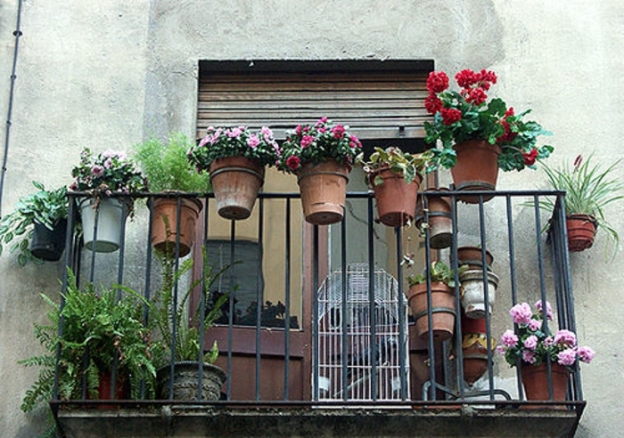 balkon-blumen-viele-pflanzentöpfe