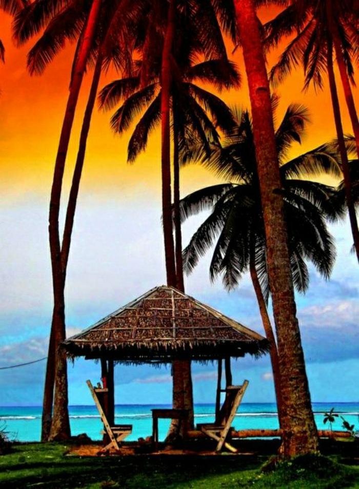 exotischer-Strand-Maui-Insel-Hawaii-Palmen-Laube-Urlaub