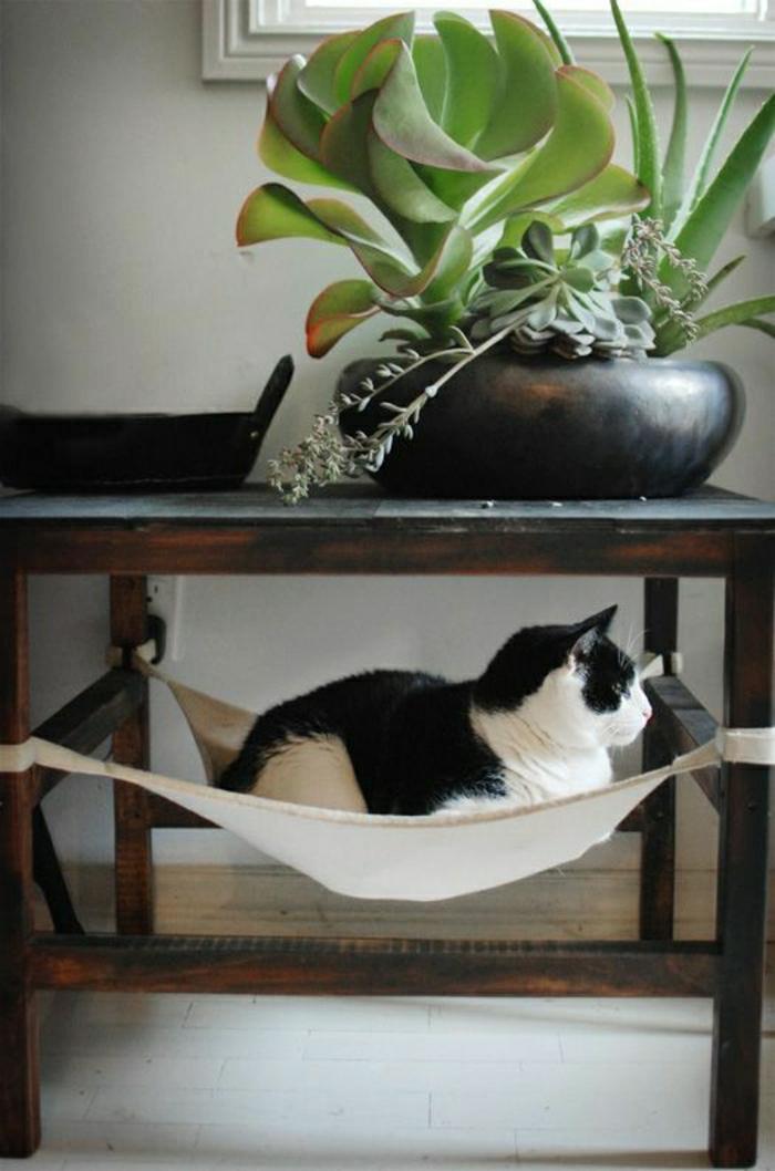 die h ngematte f r katzen ist ein absoluter hit. Black Bedroom Furniture Sets. Home Design Ideas
