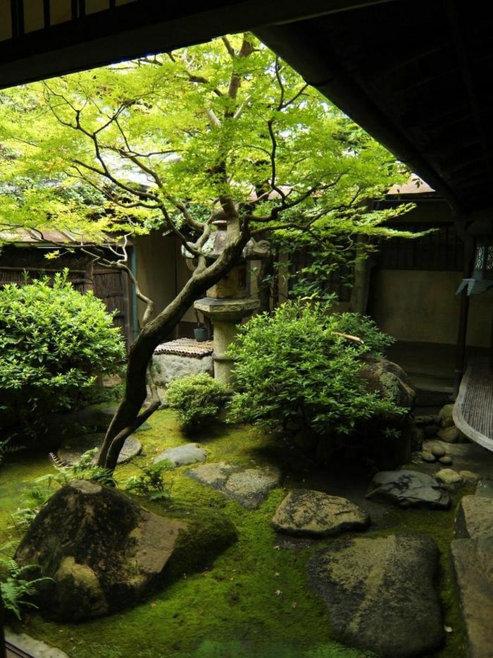 japanischer-Garten-Kyoto-Bäume-Zen