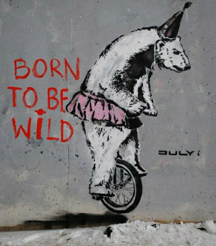 lustige-Graffiti-Bär-Aufschriften-lustig-komisch