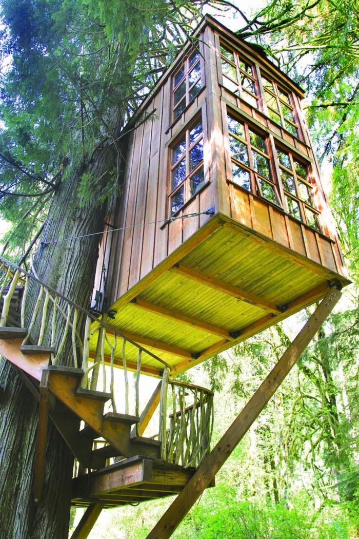 luxus-baumhaus-foto-von-unten-genommen