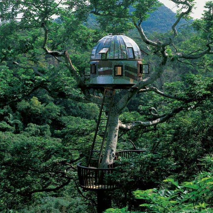 luxus-baumhaus-grüne-bäume-sehr-interessant