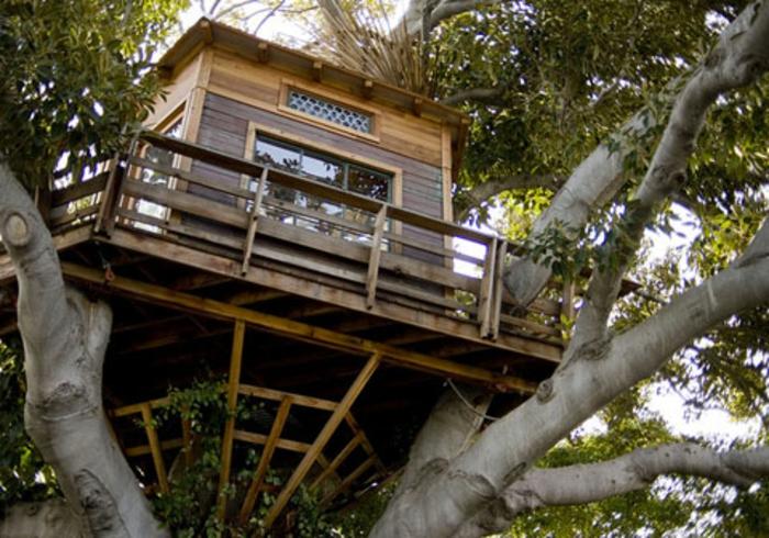 luxus-baumhaus-schönes-foto-von-unten-genommen
