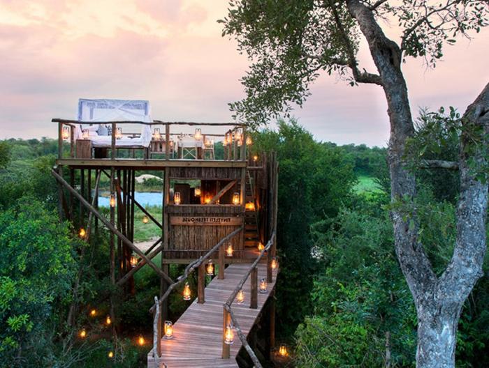 luxus-baumhaus-tropischer-wald