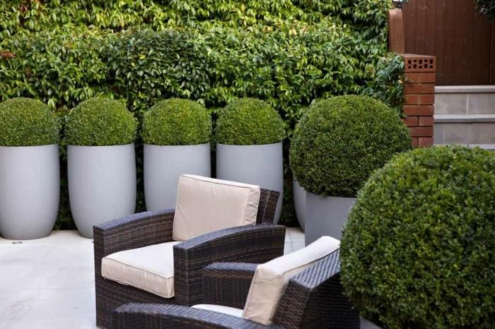 sichtschutz mit pflanzen gartendkeo ideen pflegeleichte gartenpflanzen grüne büssche garten gestalten