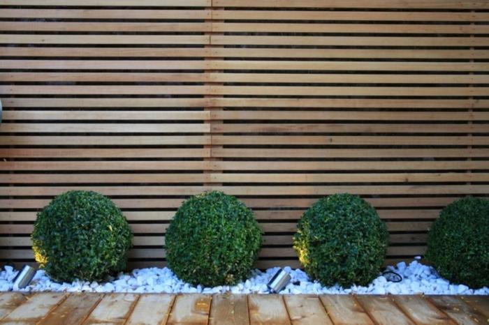 sichtshutz holz modern gartenzaun ideen holzzaun aus holzdielen grüne büche garten ideen