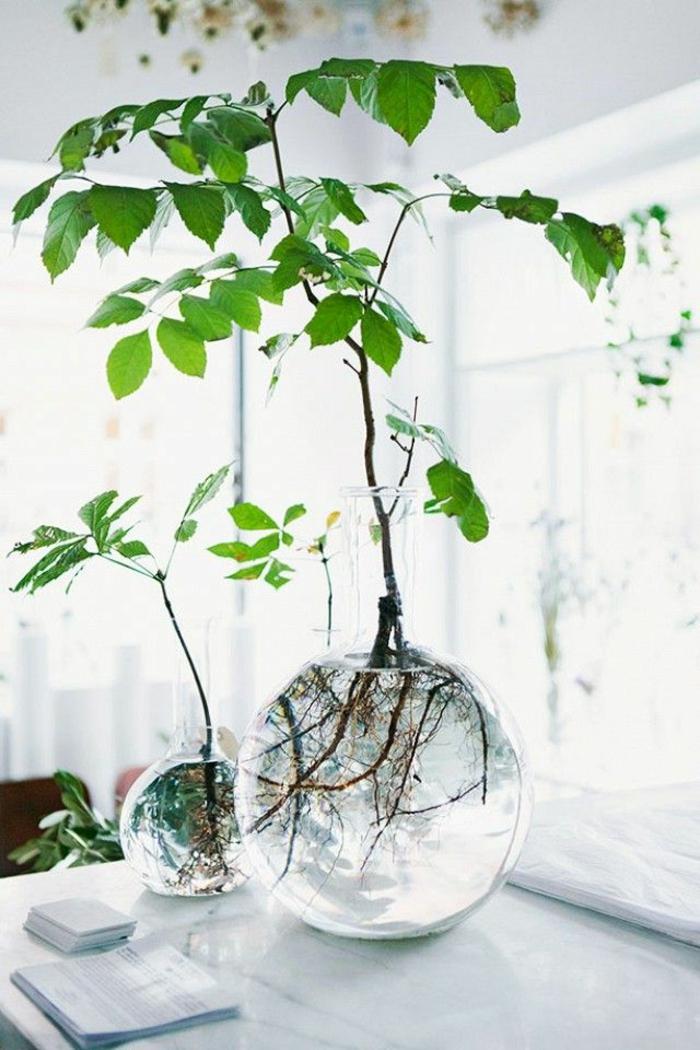 vasen-deko-ideen-grüne-pflanzen-in-kugelförmigen-bechern