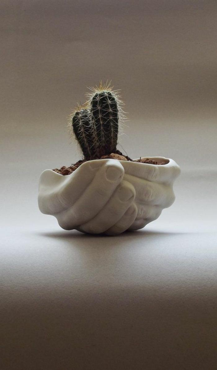 vasen-deko-ideen-zwei-süße-kakteen