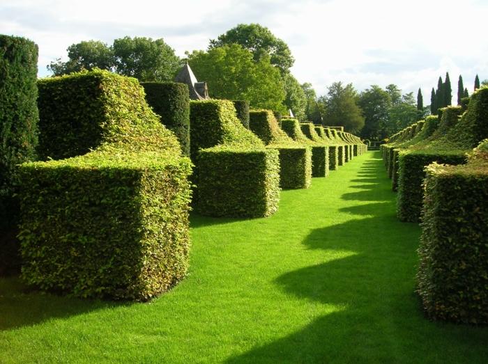 Garten-englisches-Design-gut-gepflegt-gestaltet