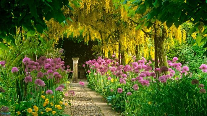 Garten-englisches-Design-rosa-Blumen-Baumblüten