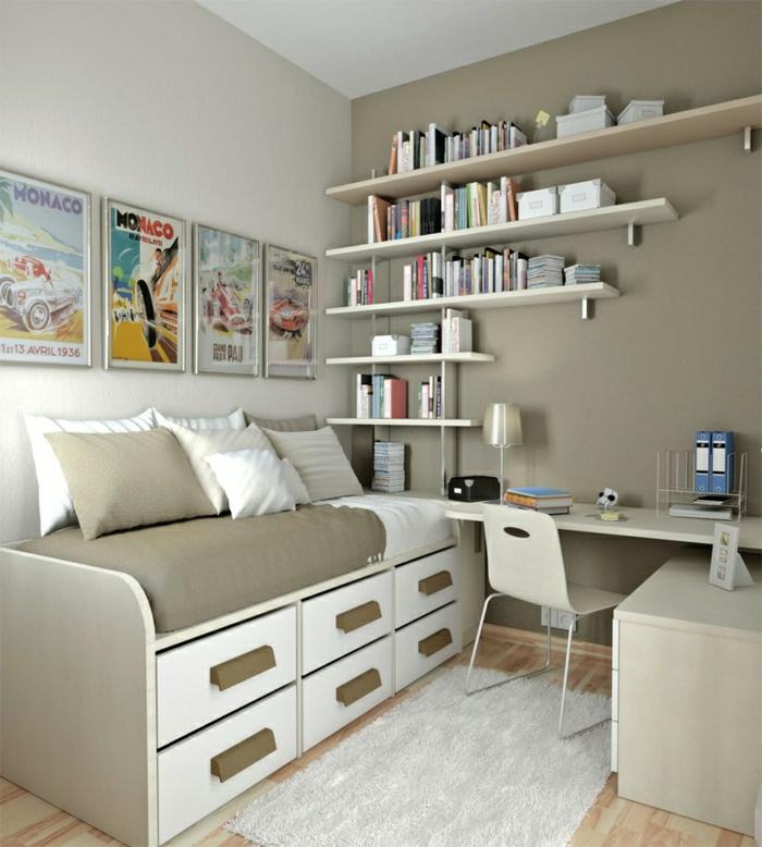 Jugendzimmer-Cappuccino-Wände-Sofa-viele-Bücherregale-Schreibtisch-schlichtes-Design