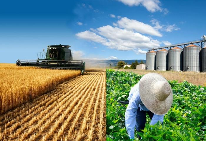 forst-und-landwirtschaft-schöne-arbeit