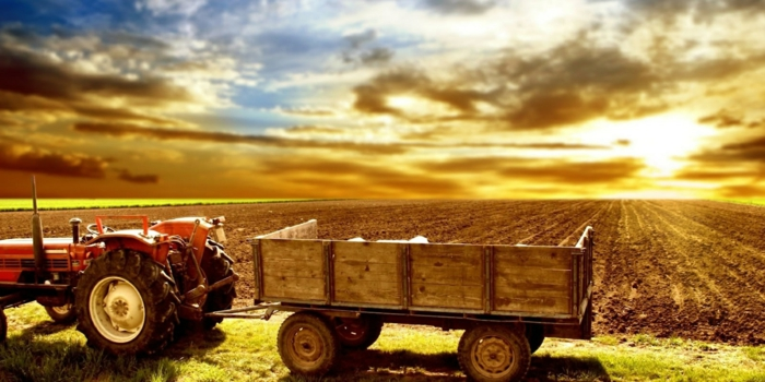 forst-und-landwirtschaft-traktor