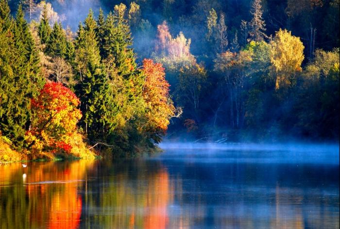 hintergrundbilder-zum-herbst-bunte-wunderschöne-farben