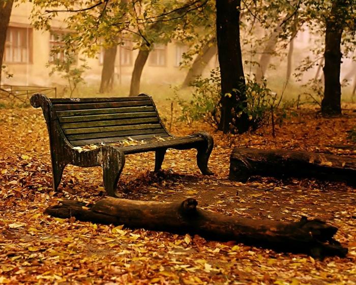 65 schöne Hintergrundbilder zum Herbst! - Archzine.net