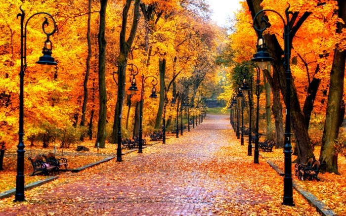 65 Schone Hintergrundbilder Zum Herbst Archzine Net