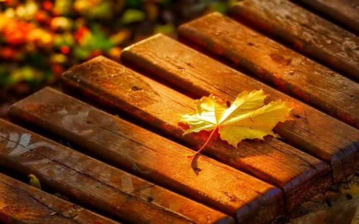 65 Sch 246 Ne Hintergrundbilder Zum Herbst