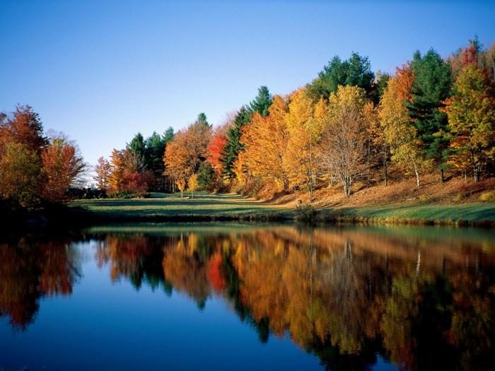 hintergrundbilder-zum-herbst-teich-und-herrliche-bäume