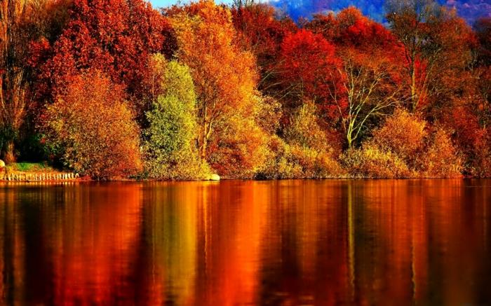 interessante-farben-hintergrundbilder-zum-herbst