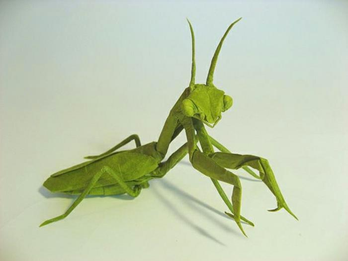 origami-tiere-grüne-heuschrecke