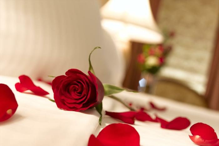 romantisches-bett-rosenblätter