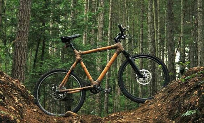 Bambus-Fahrrad-feste-Reifen-Wald-Spaziergang-offroad