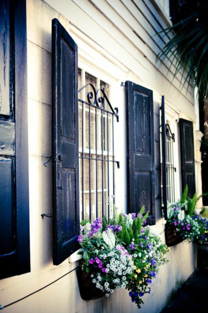 Fenster-Gitter-Läden-schwarz-Blumen