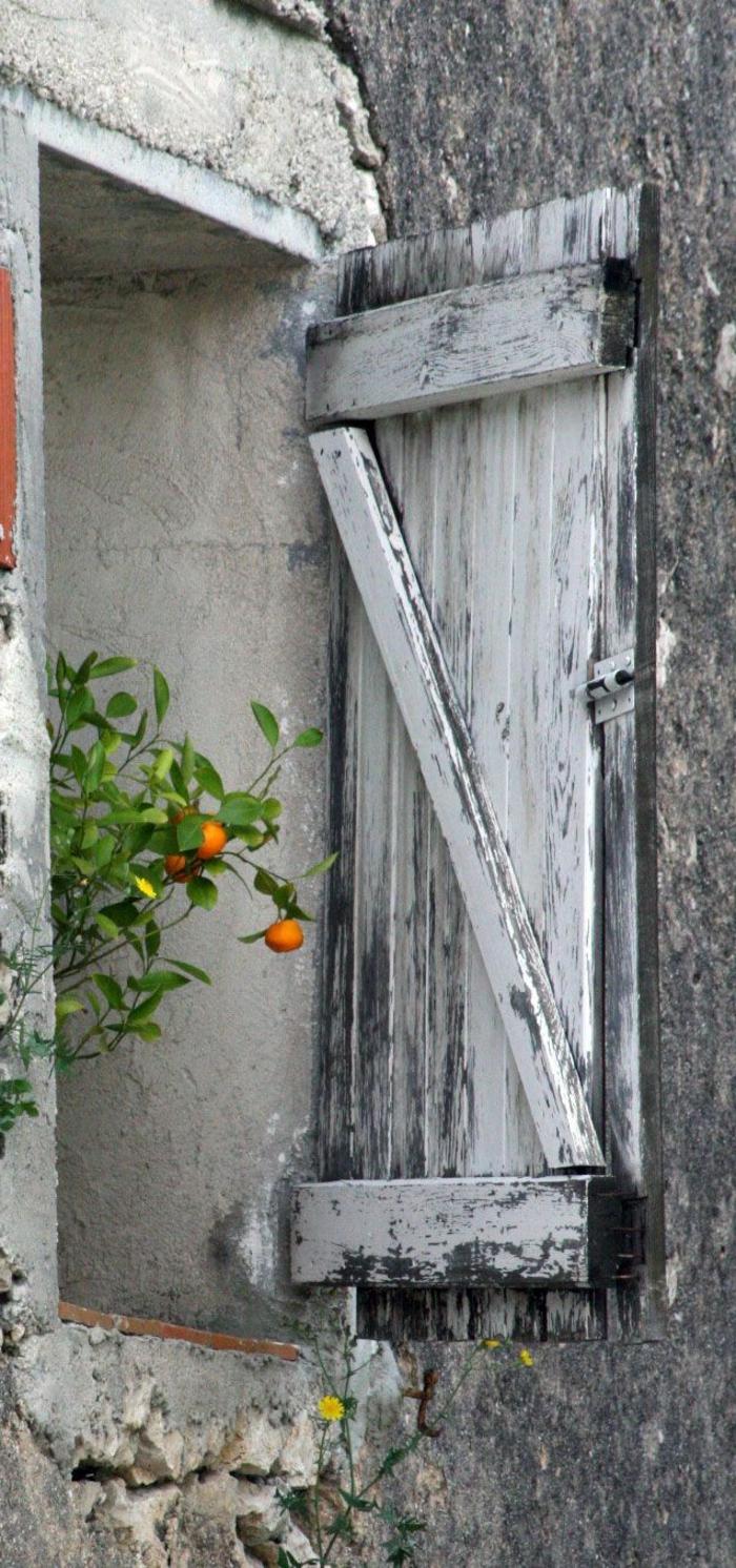 Fenster-Mandarinen-Zweig-hölzerne-vintage-Läden