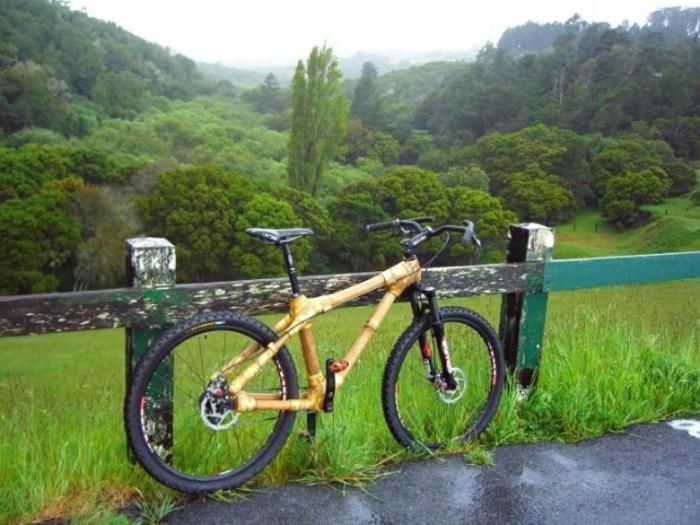 Natur-Grün-Bambus-Fahrrad-große-Reifen-Zaun