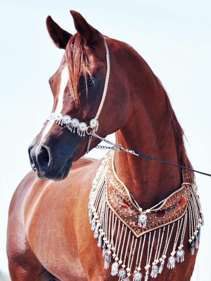 Pferd-Kette-Boho-Stil-originelle-Idee