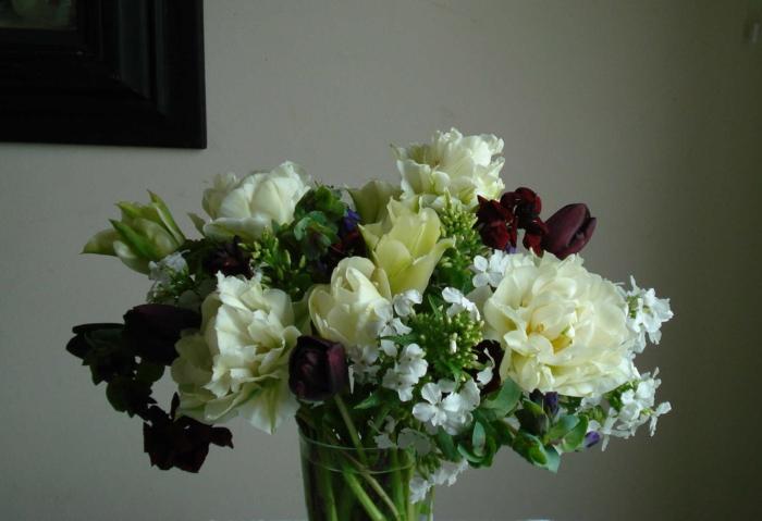 Vase-Strauß-verschiedene-Blumen-schwarze-Tulpen-Mauerblümchen-Pfingstrosen-herrlich-Frühling