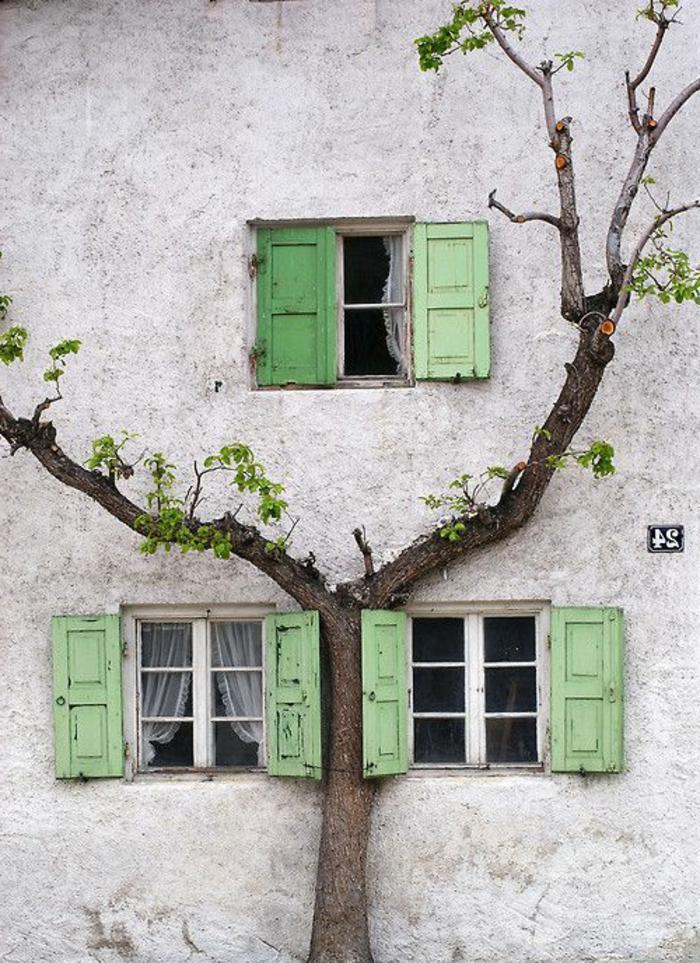 altes-Gebäude-Baum-kleine-Fenster-grüne-Läden-vintage
