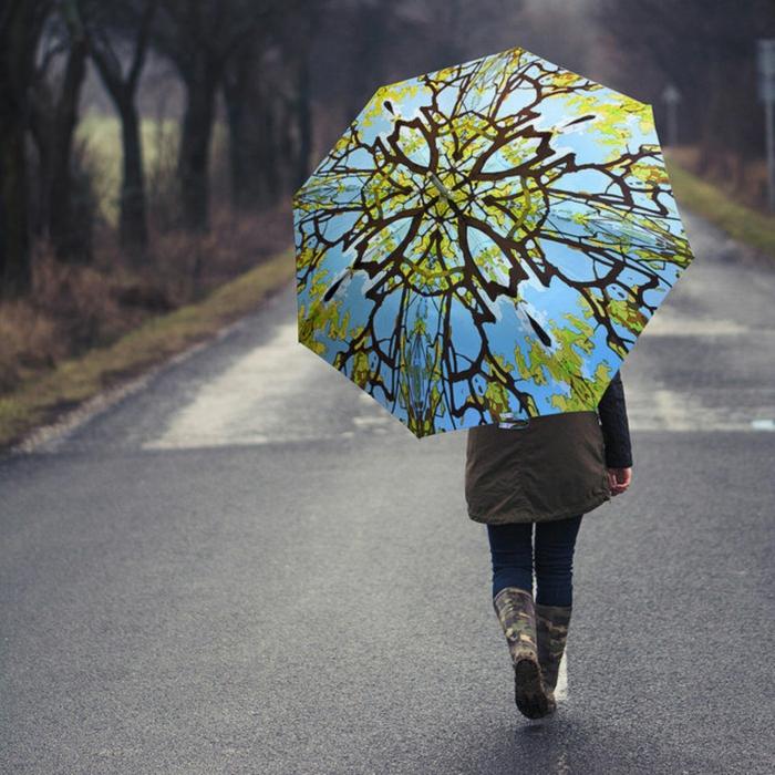 ausgefallene-regenschirme-foto-von-hinten-genommen