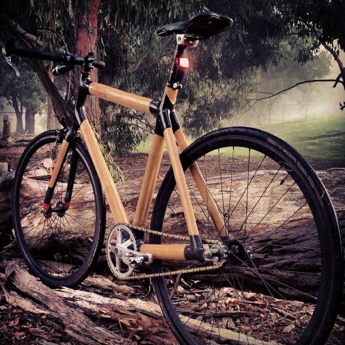 bambus-Fahrrad-Natur-Wald-offroad